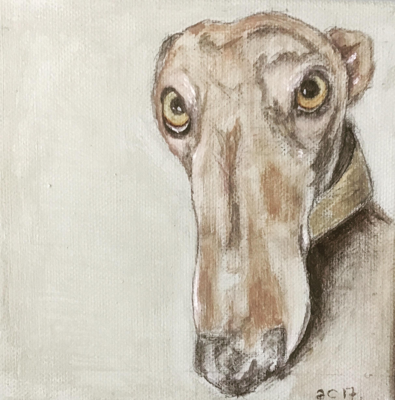 Aisling Coughlan Solomon Gallery 2.jpg