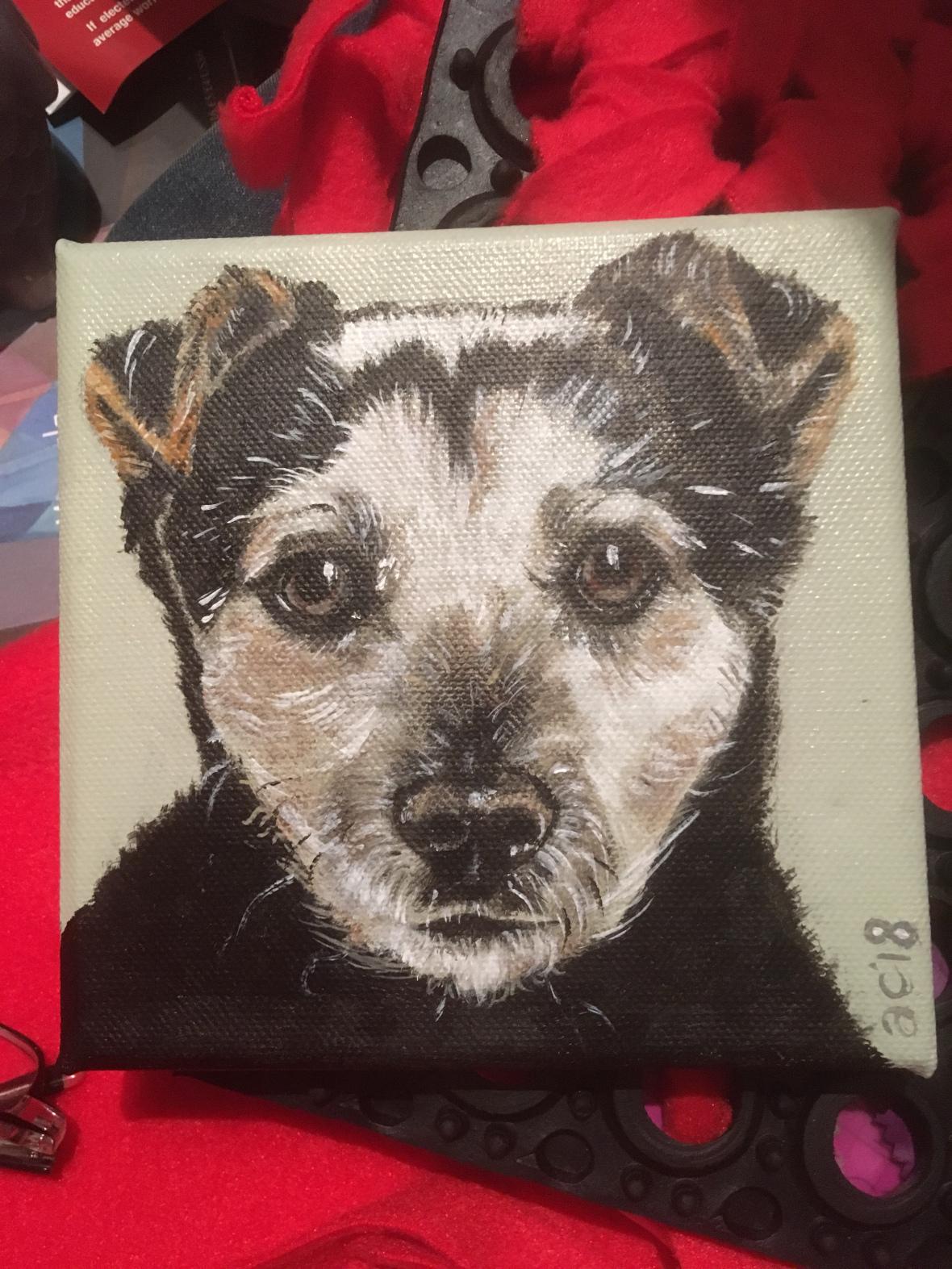 Aisling Coughlan Puppy Love.jpg