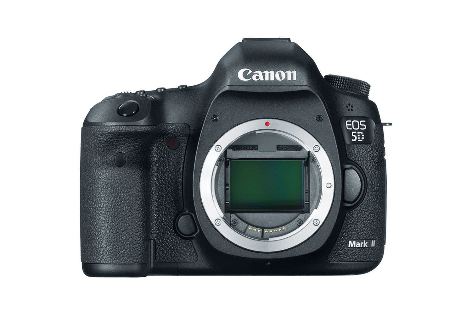 Canon 5D Mk II - 25 EUR/day