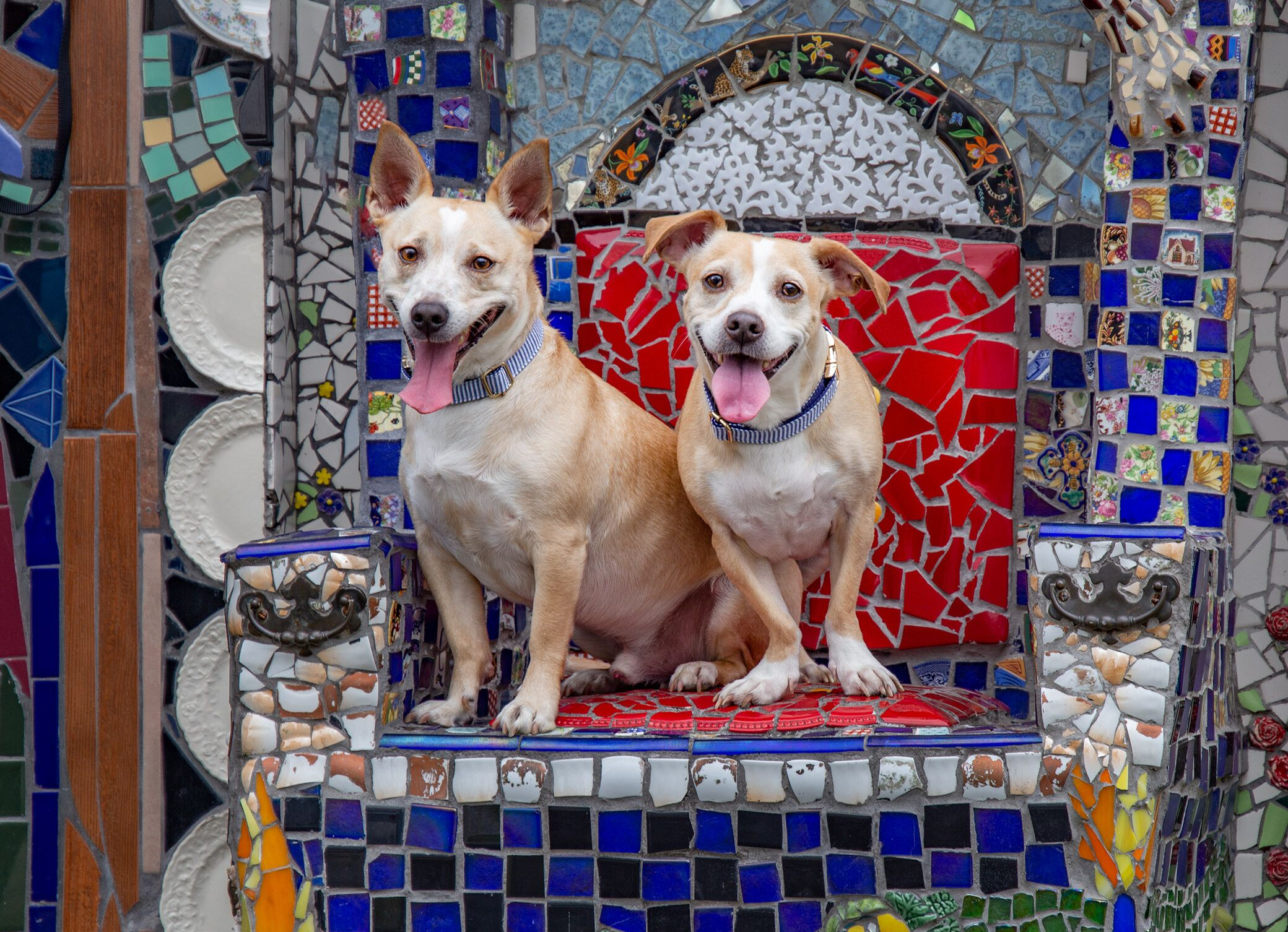Jackson and Houston posing on the Mosaic Memory Wall