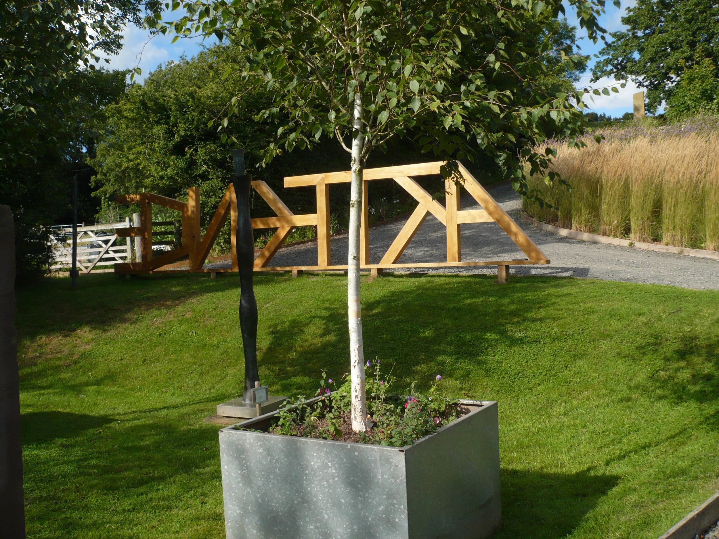 Birch garden looking towards sloping bank garden. (2013)