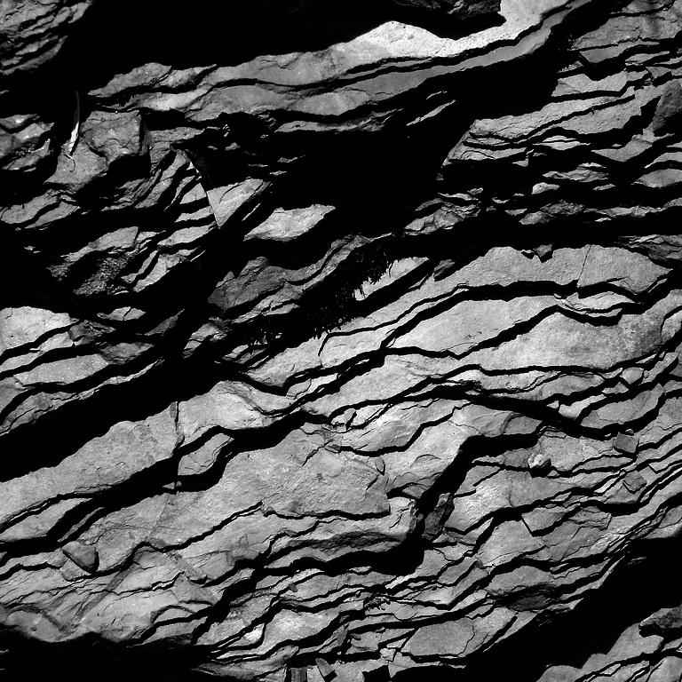 shale image.jpg