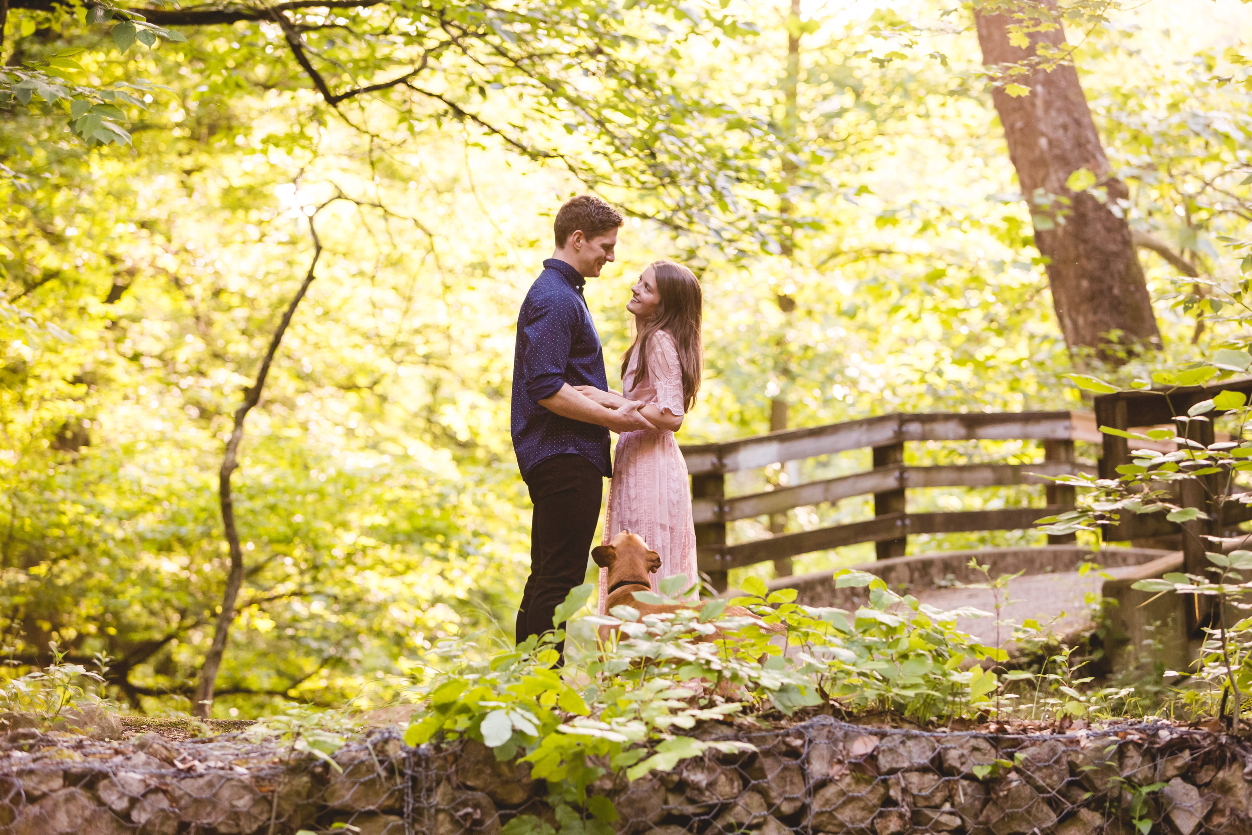 michael and kelsey get engaged in glen echo park with a bridge and their dog in a storybook setting columbus