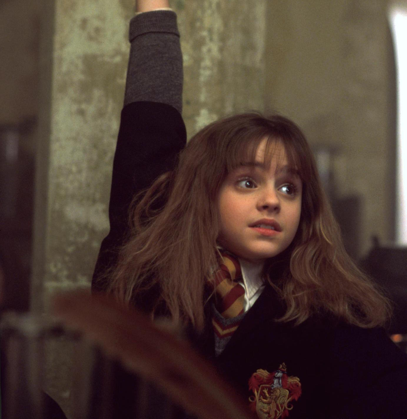 he Best (and Worst) Characters In Harry Potter - Hermione Granger