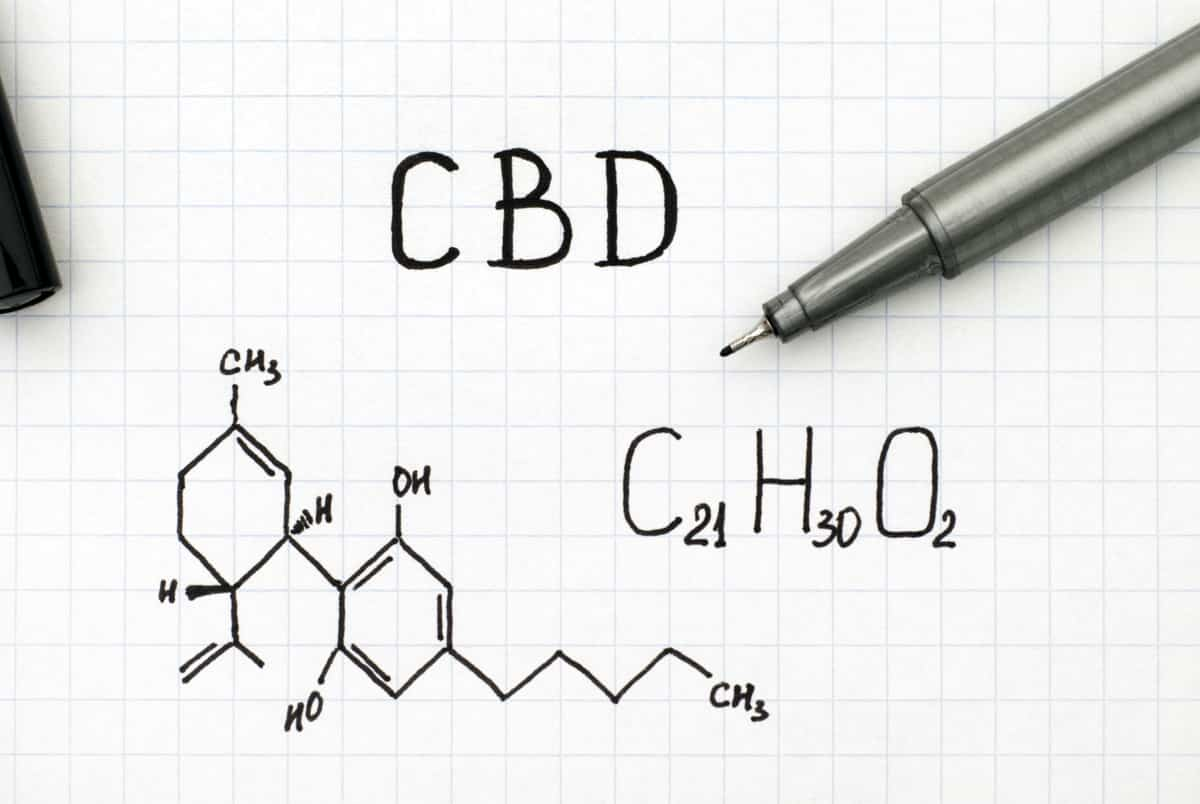 Guide To CBD