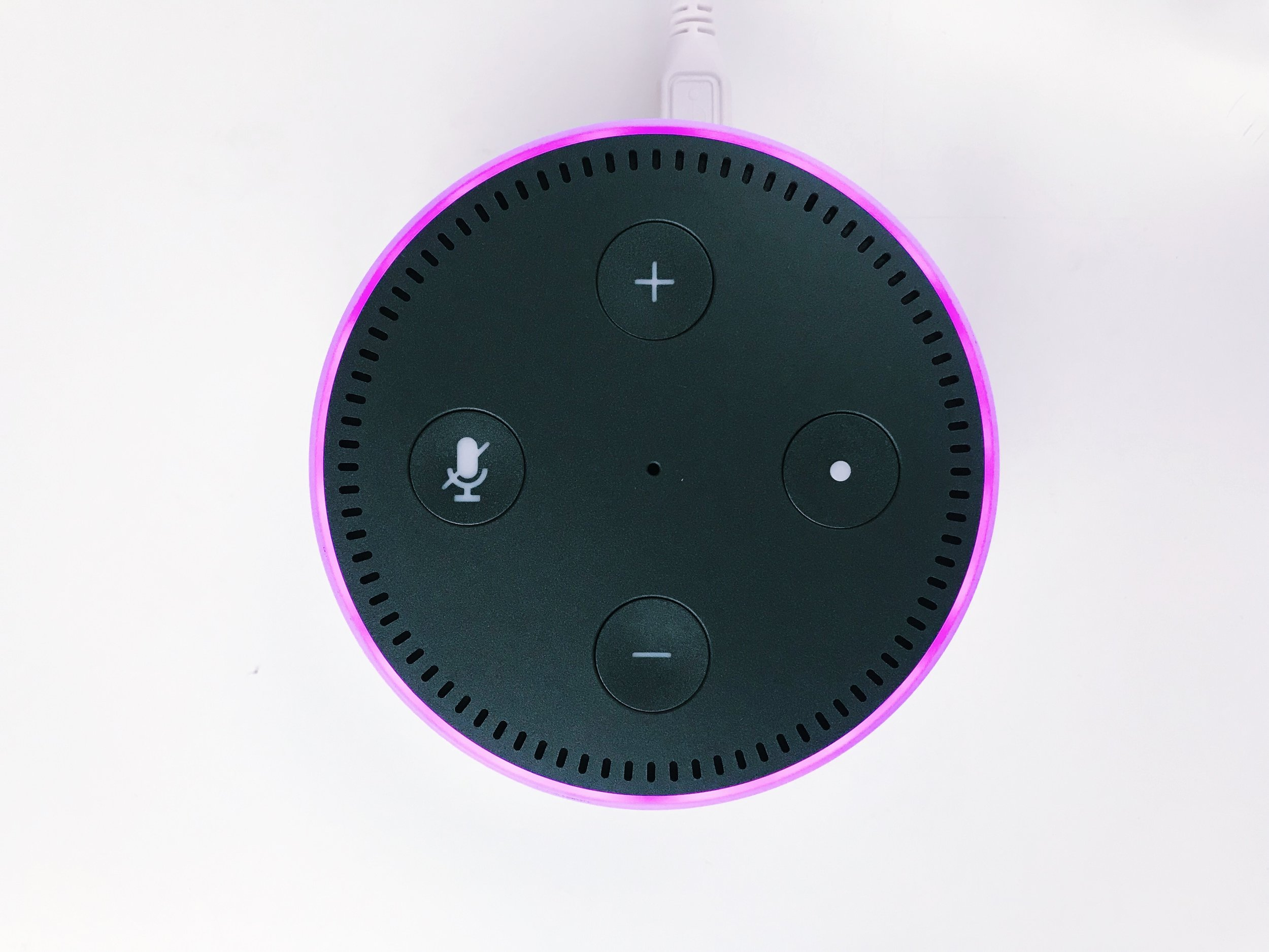 Alexa-purple.jpg