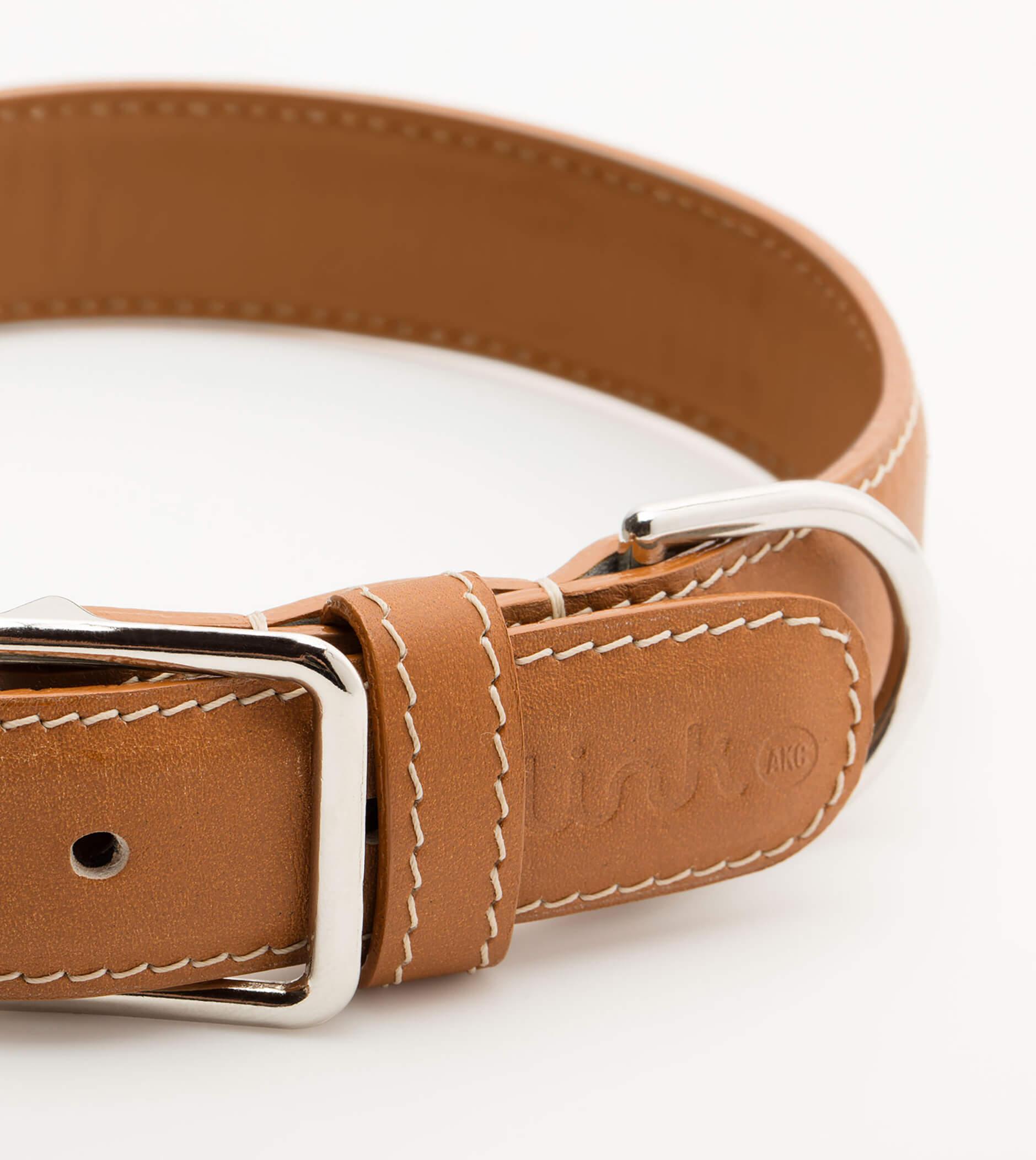 Link-dog-collar.jpg