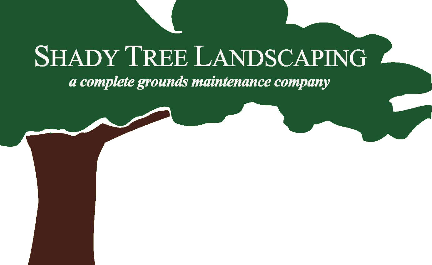 Shady Tree BC Logo - Trans.png