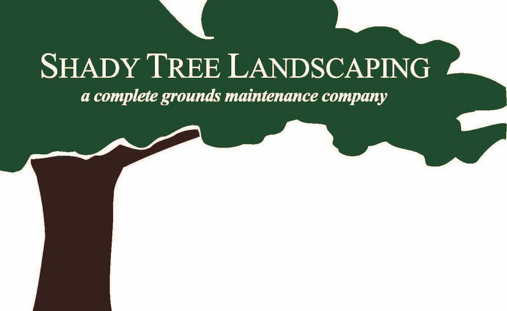 Shady-Tree-Logo.png