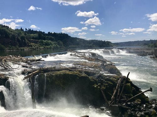 06012018_WillametteFalls_credit_WFLP.jpeg