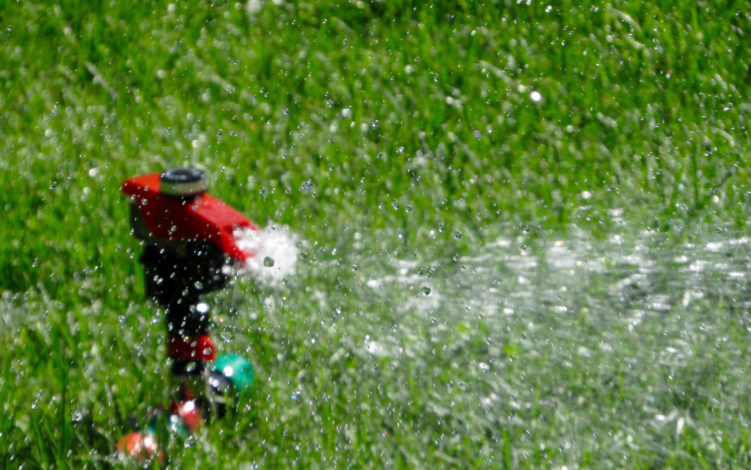 """Let 'um rip!"" - The shout resounds past a row of matching houses.                    1, 2, 3 Sprinklers blast water skyward. Ten children line the edge of the first yard. Charge! Twenty feet dash into misted grass. Only green knees and twisted bathing suits tell anyone this is not the first run of the day."