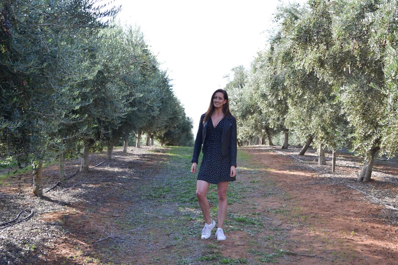 A Day at Cobram Estate olive groves