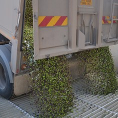 Cobram Estate Extra Virgin Olive Oil groves
