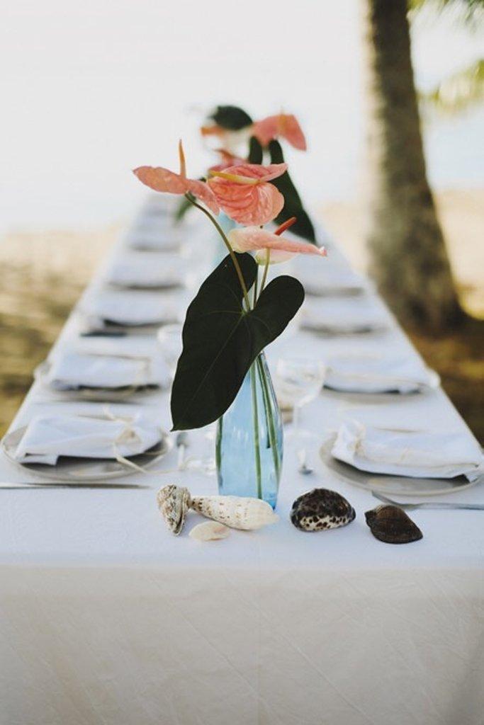 Weddings & Celebrations -