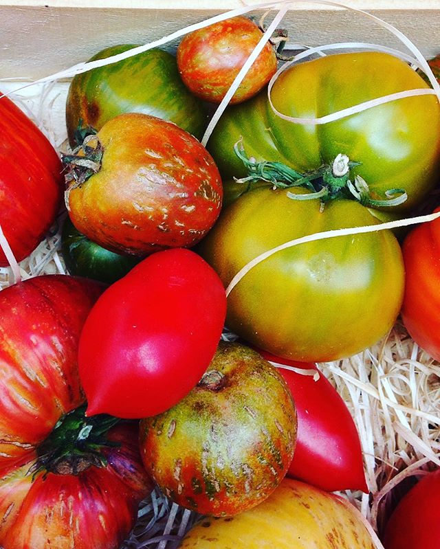 I am in love with those organic tomatoes 🍅 France in summer offer the best at the farmers markets #tomatoes #inlove #salad #summertreats