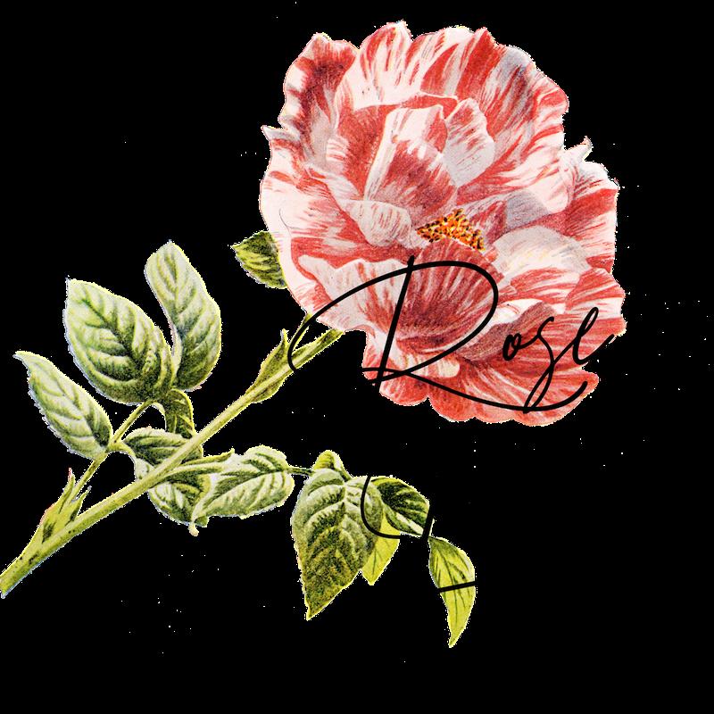 SHOP: ROSE LANE - Bespoke Home Goods