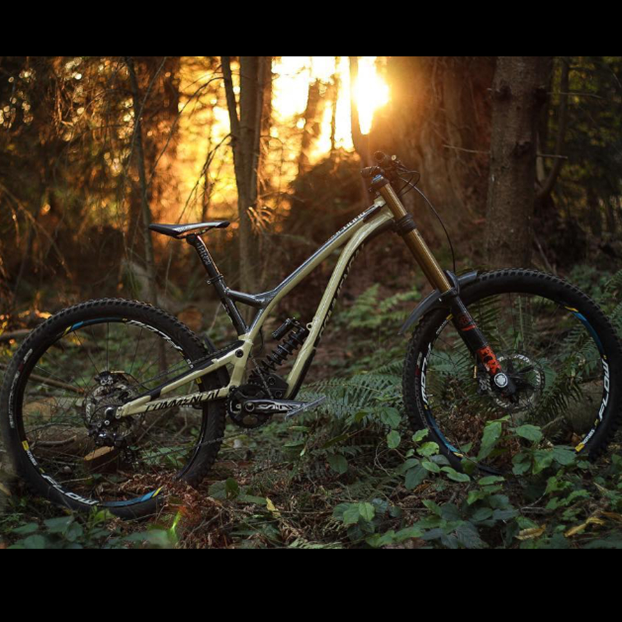 ERIC HARTLEY | COMMENCAL SUPREME DH 4.3