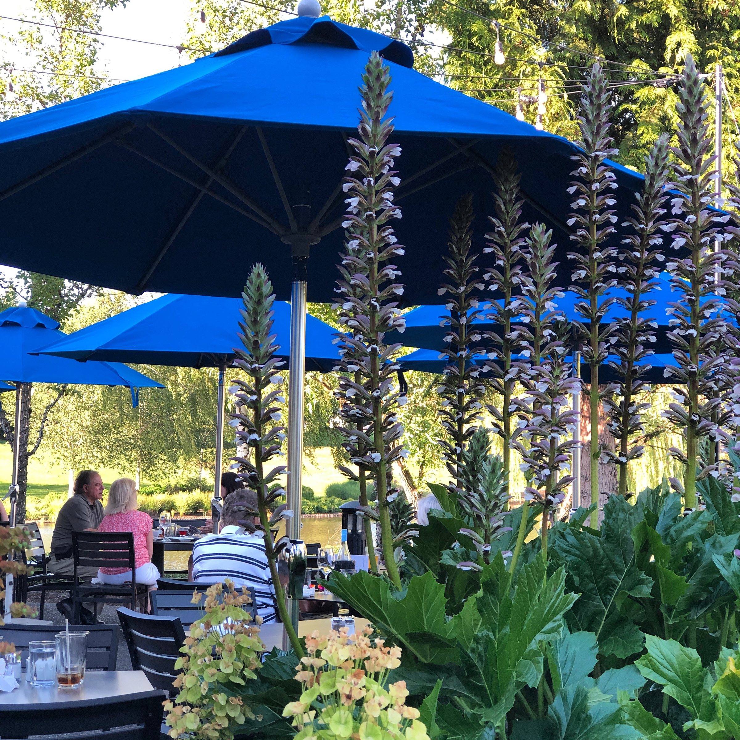 Join us out on the patio.
