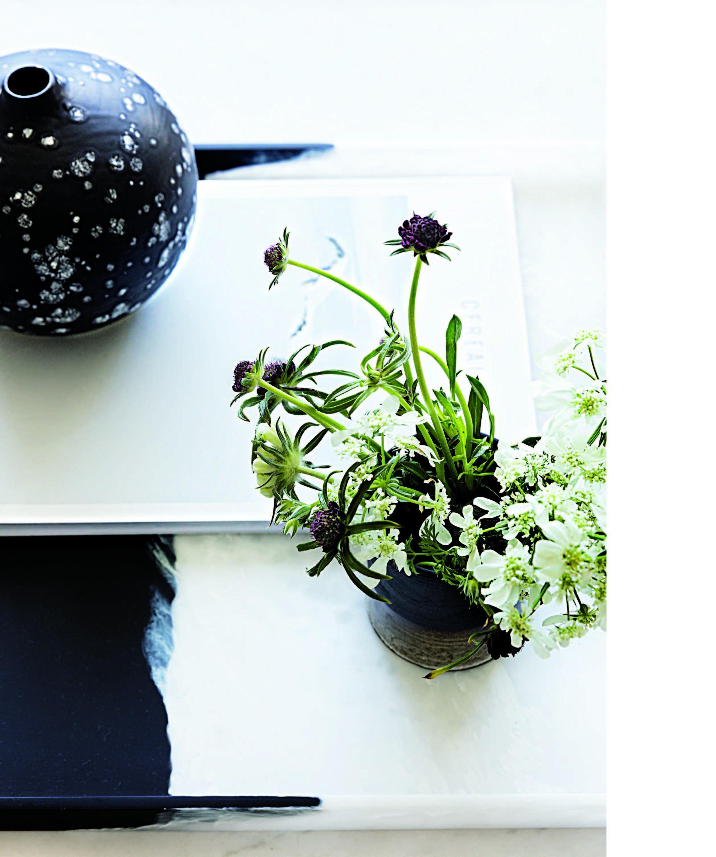 Lauren Nelson Design for The Lonny Home 6.jpg