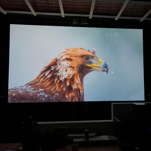 image-projected-on-high-gain-projector-screen-paint-using-smart-projector-paint-pro.jpg