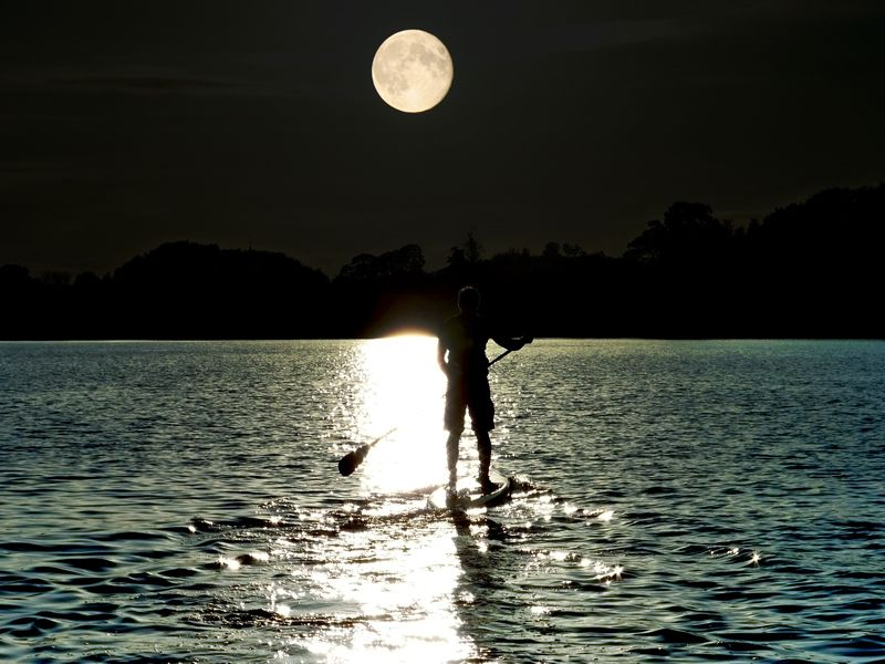 Full Moon Tour - 1:30 HRS $40 PER PERSON SUP O SINGLE KAYAK $60 PER PERSON DOUBLE KAYAKA unique experience! Enjoy doing SUP under the full moon in Bahia Herradura.Level: Intermediate and Advanced * You Must have some previous experience in SUPContact Us