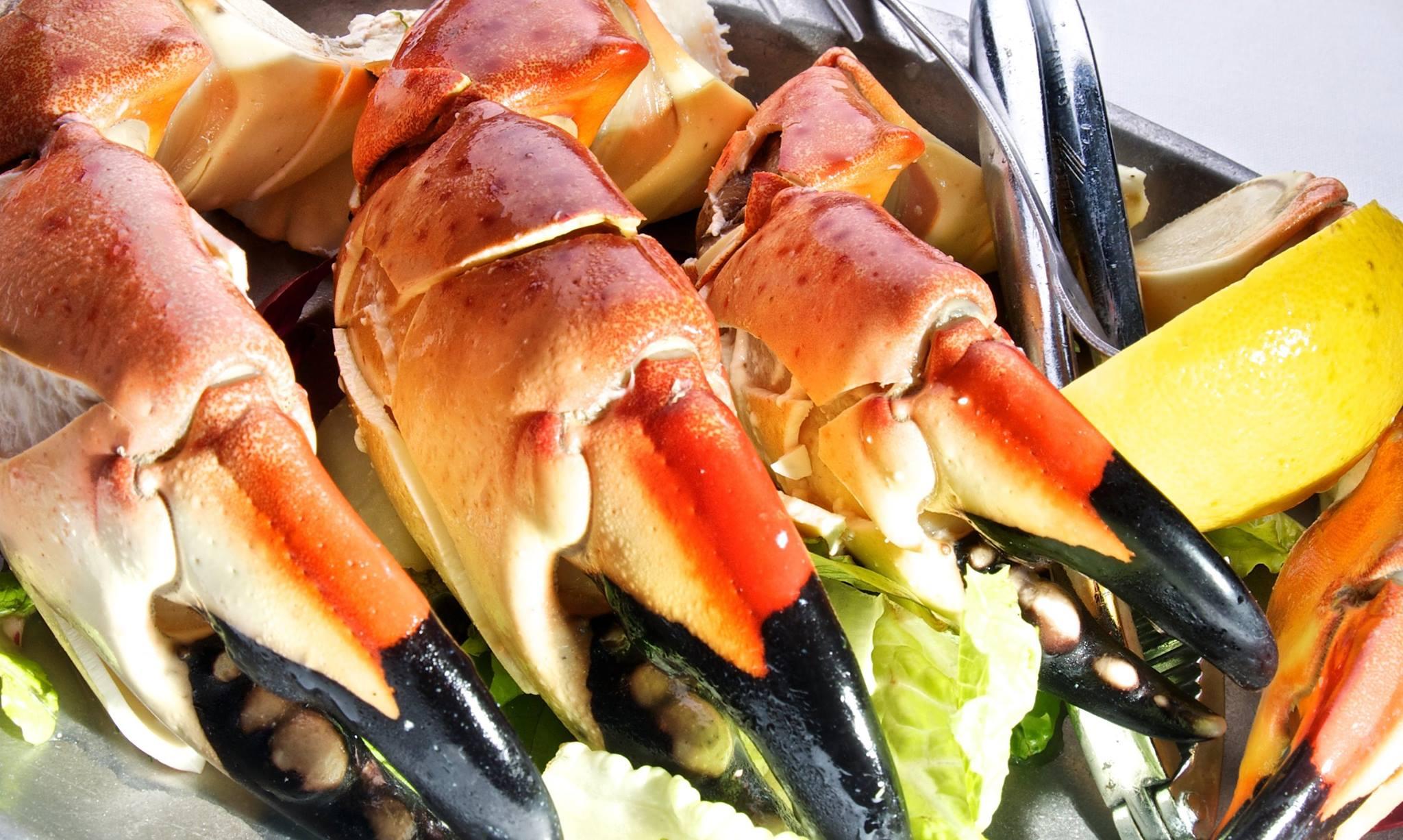 Key_Largo_stone_crabs.jpg