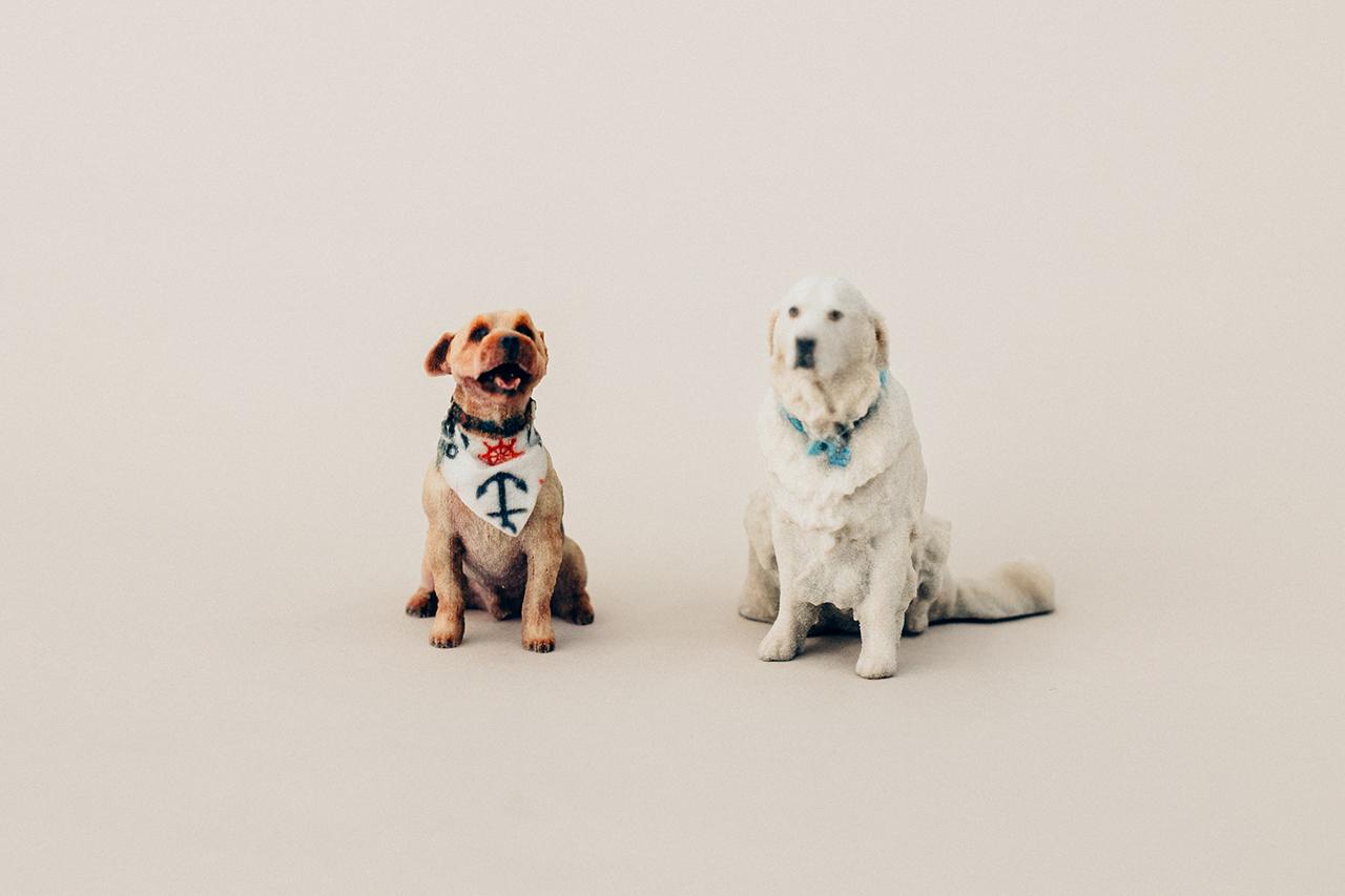 <— Pets -