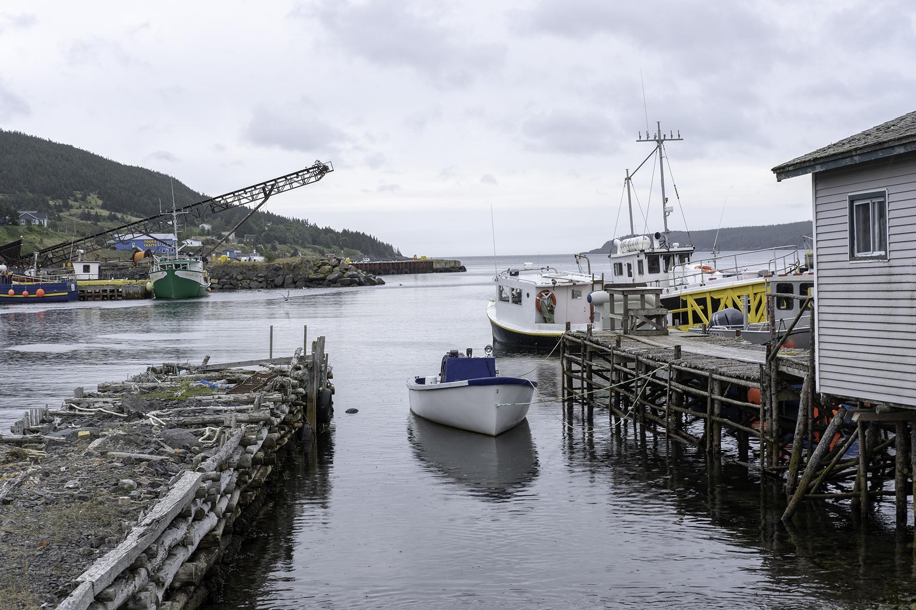 JodiLove_Baybull_Newfoundland_Canada1.jpg