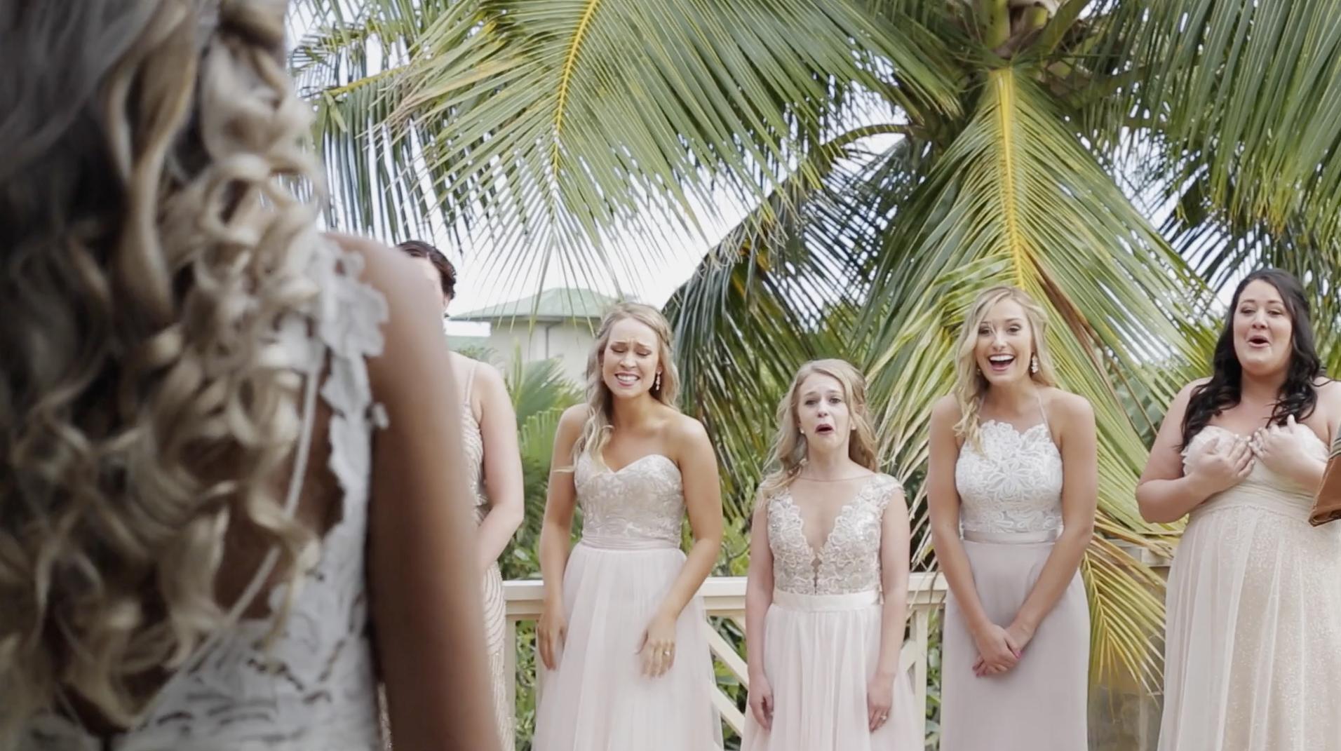 Bridesmaids First Look of Wedding Dress