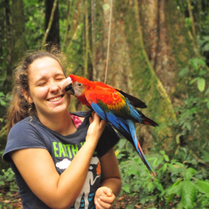 I followed this Scarlet Macaw from when he was only about 30 days old until he fledged (90 days) and was in charge of measuring him everyday