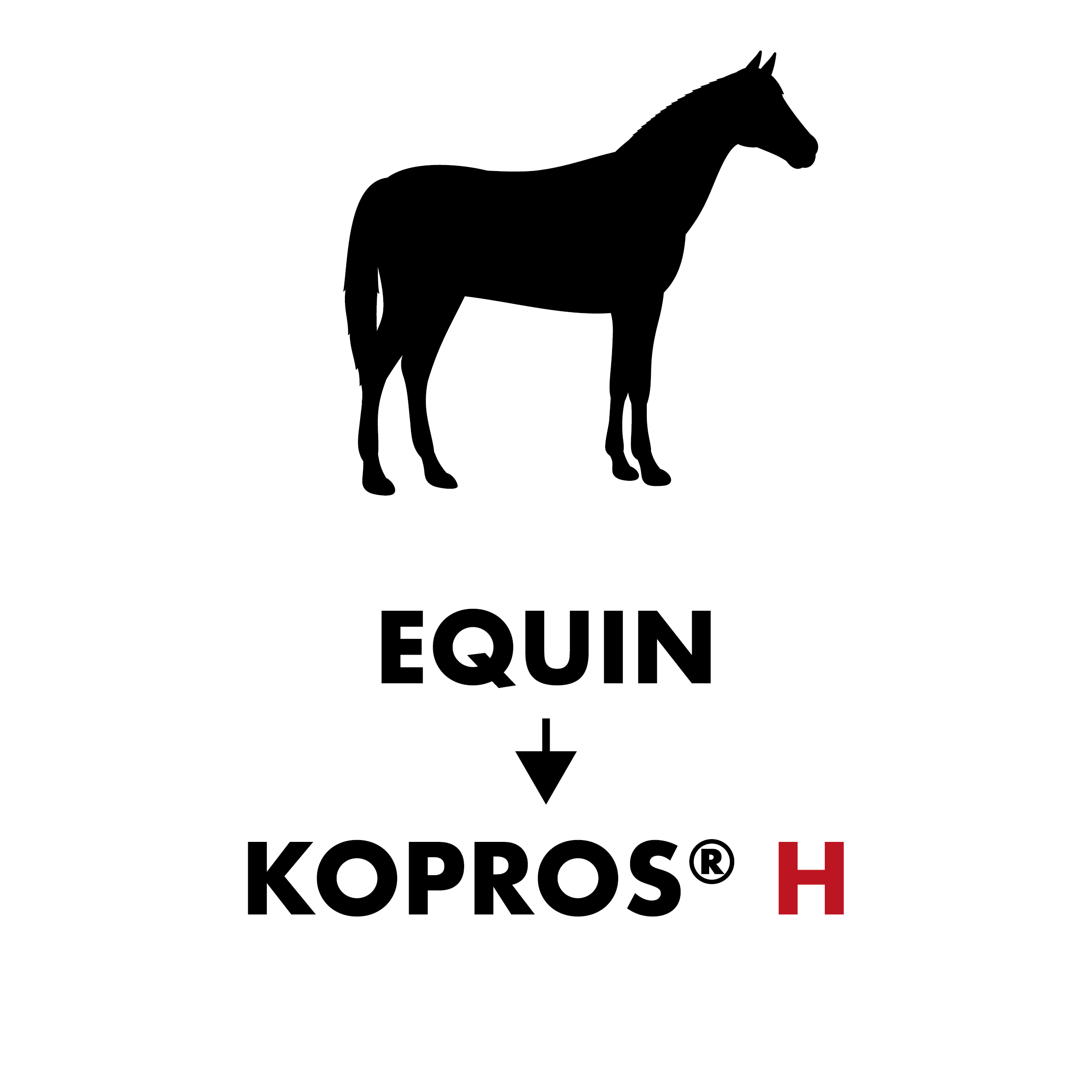 Equin