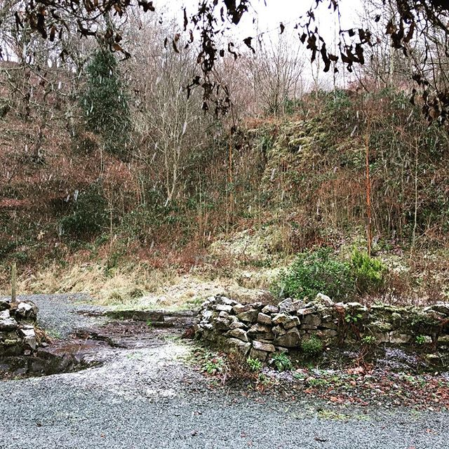 A welcome for new Ffynnonau guests today! Snow 😊  #Ffynnona #holidaycottage #logfire #offthebeatenpath #wakeuptomidwales #thisisradnorshire