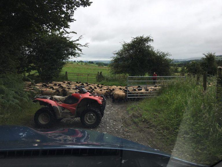 Welsh-traffic-jam-768x576.jpg