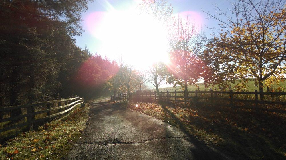 Campsite-November.jpg