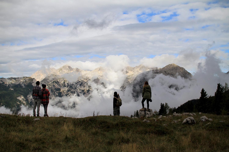 velika planina_Ferntribe.jpg