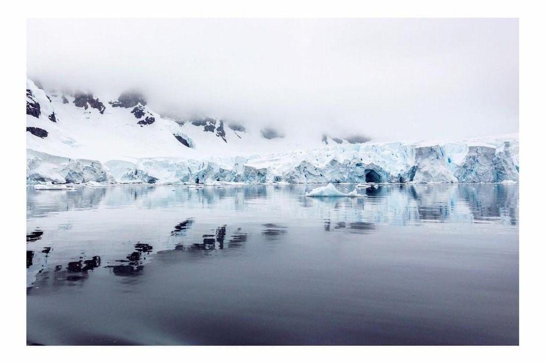 Antarctic nature Project We Travel.jpg