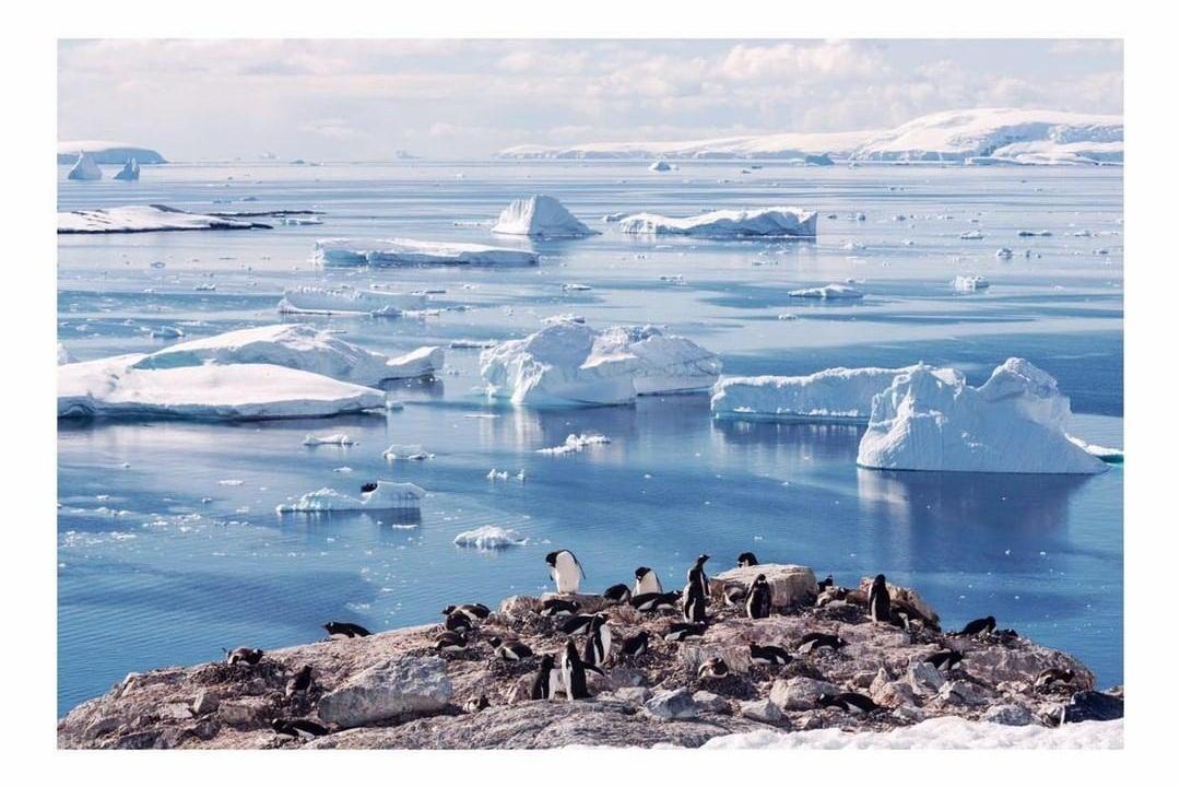 Antarctica Project We Travel.jpg