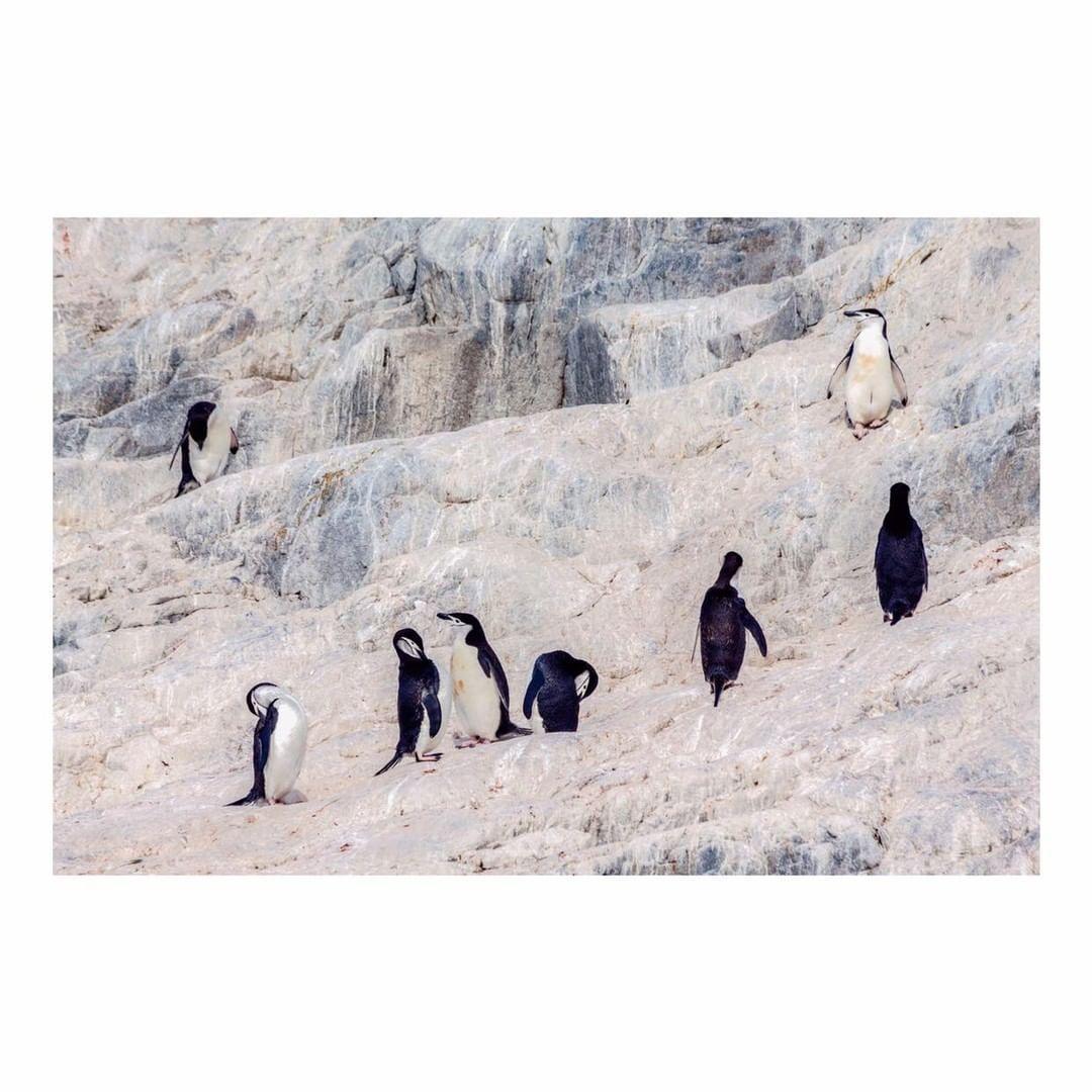 Antarctica Project We Travel (2).jpg