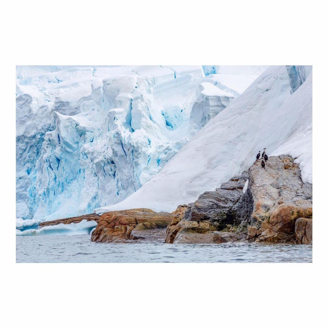 Antarctica Project We Travel (23).jpg