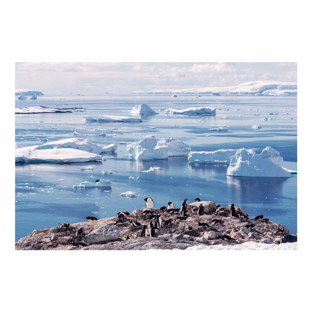 Antarctica Project We Travel (25).jpg