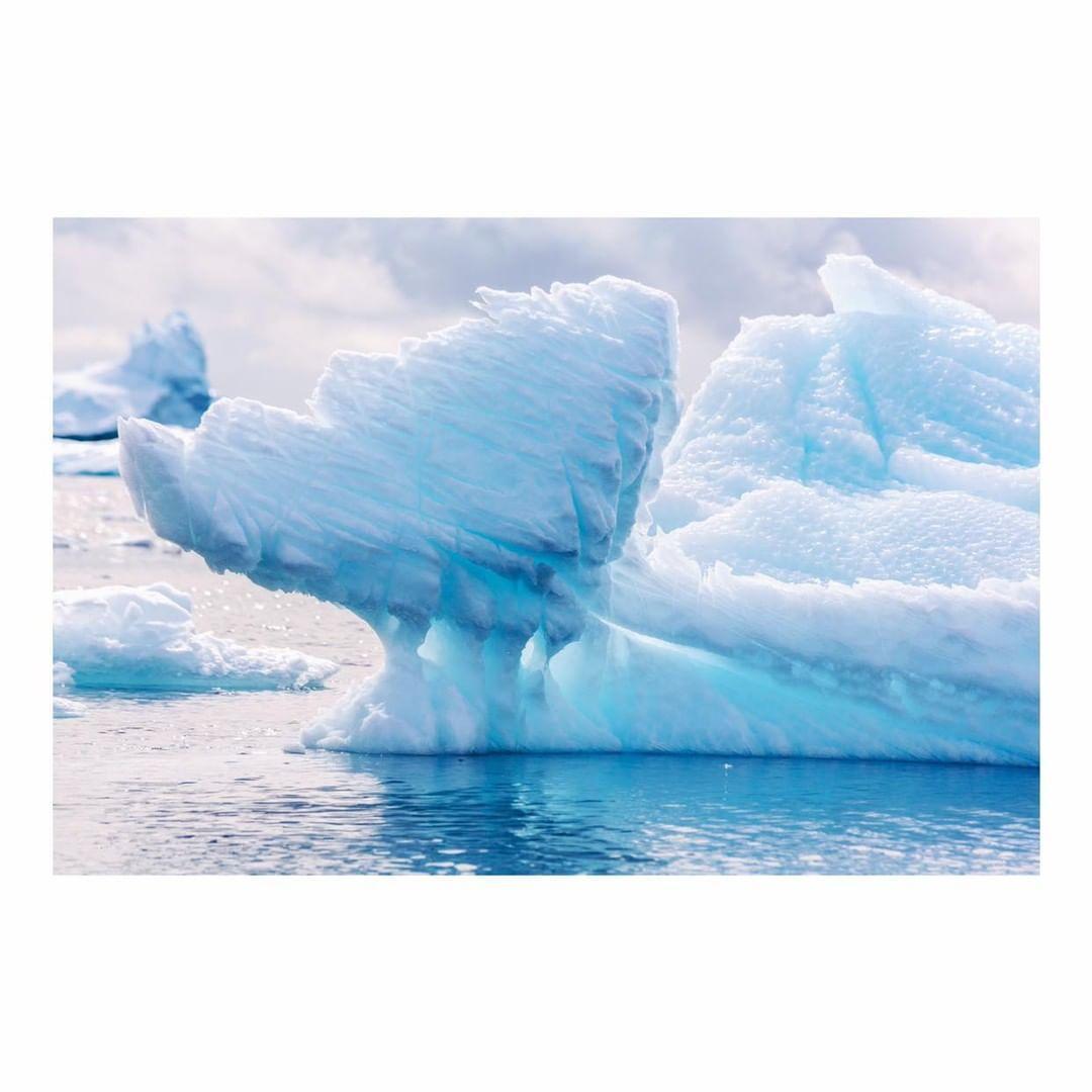 Antarctica Project We Travel (40).jpg