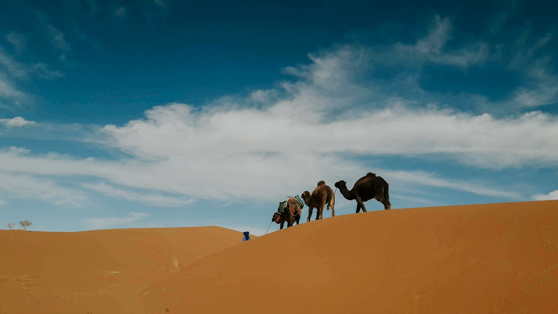 Marocco trekking Project We Travel (3).jpg