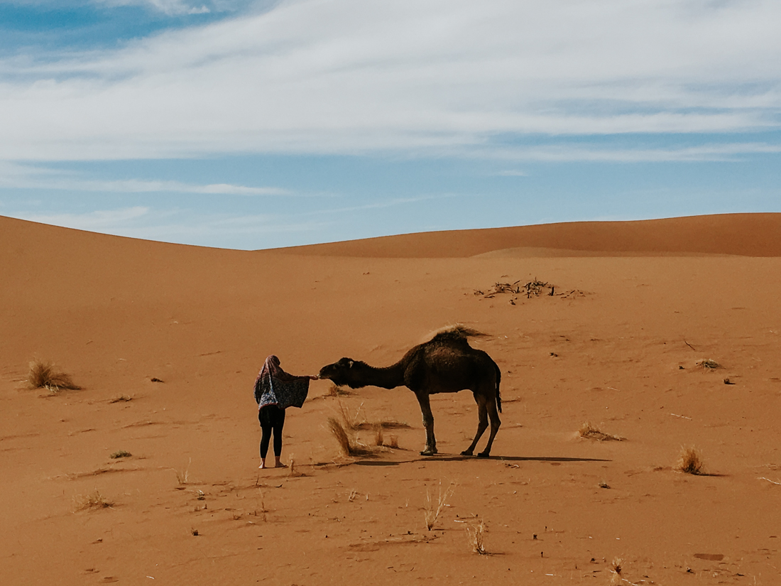 Marocco trekking Project We Travel (6).jpg