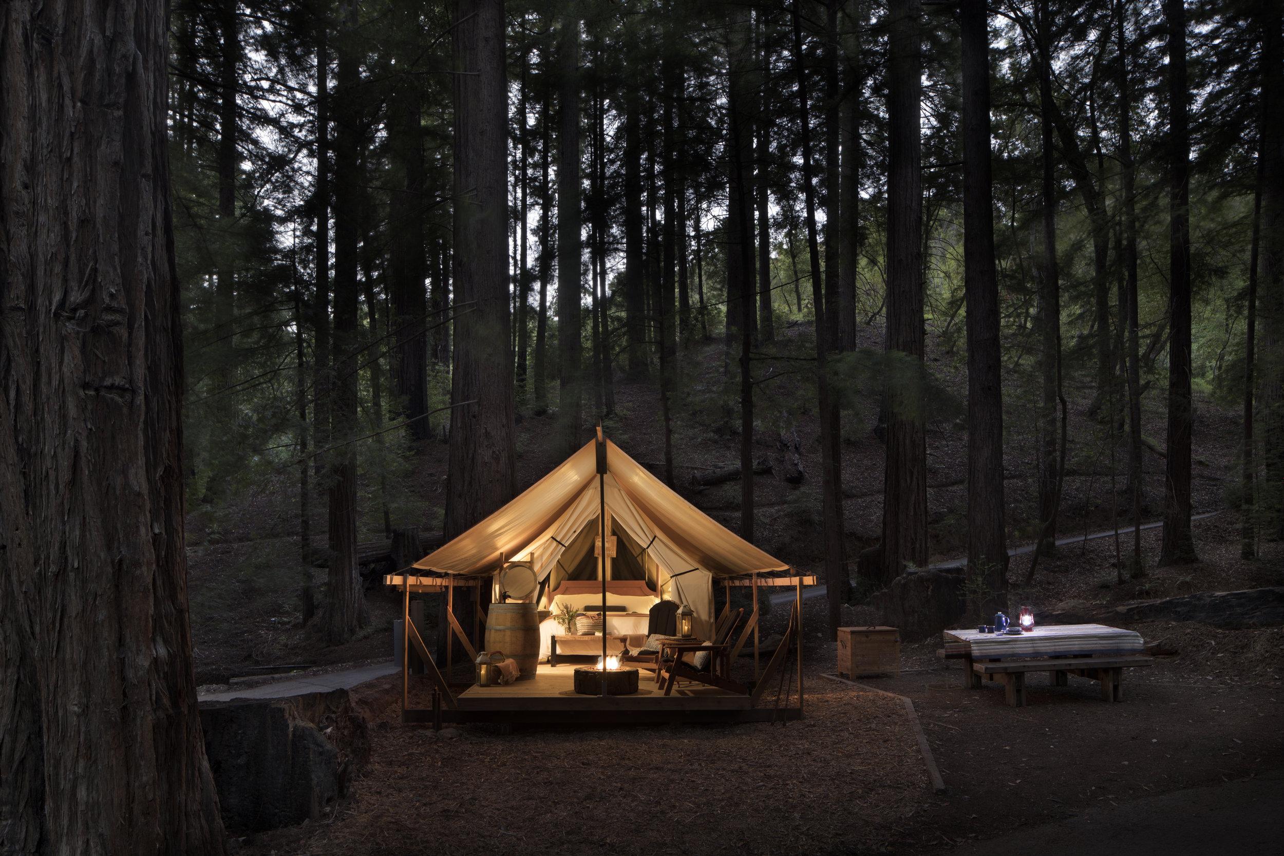 Big Sur woods; Project We Travel.jpg
