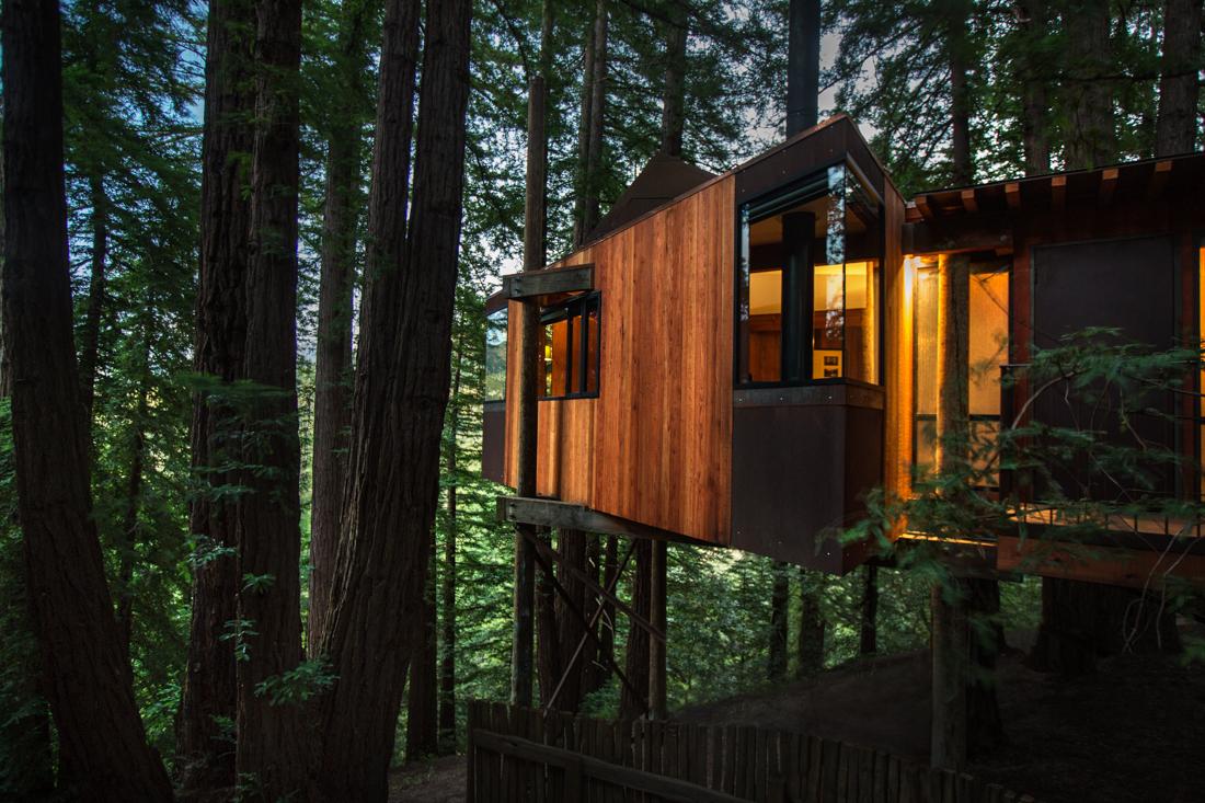 Tree house Ventana.jpg