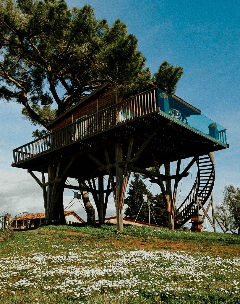 spring treehouse la piantata