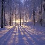 winter-7-300x225-150x150.jpg