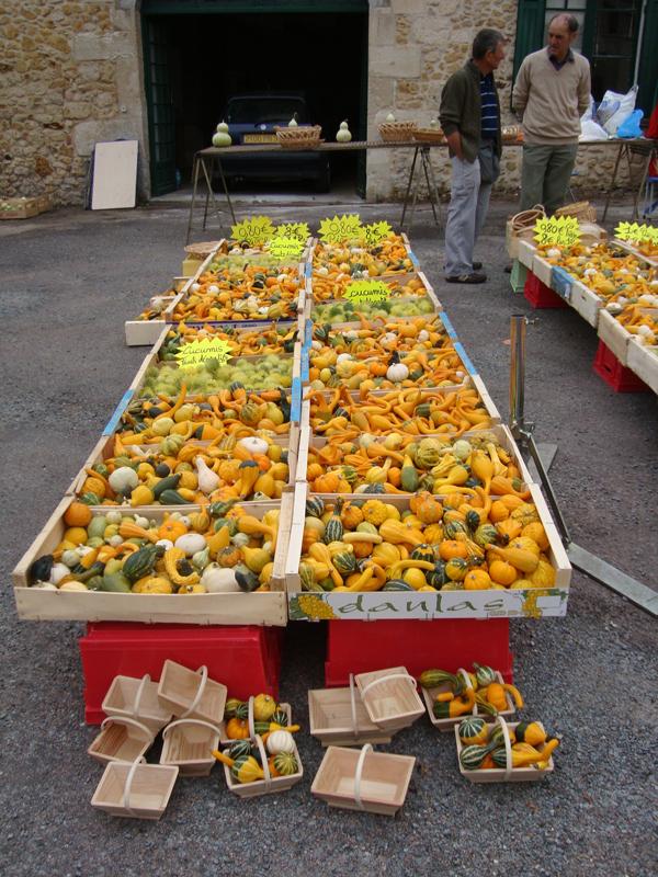 Gourds-at-pumpkin-festival.jpg
