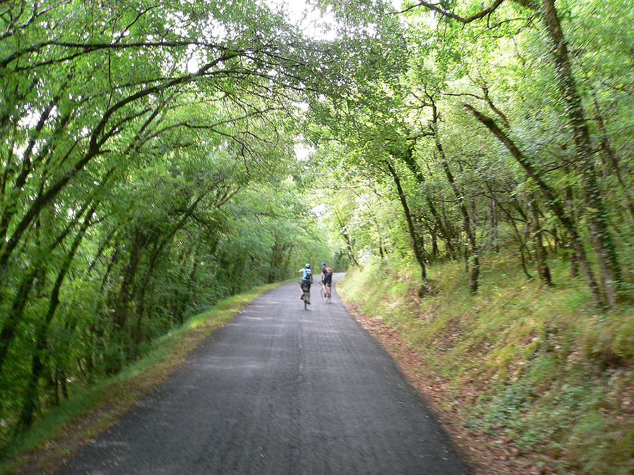 Woodland Walks & Cycle Rides - The chestnut woodland and tiny roads around the tower are lovely walking country; there is a map of local walks in the centre of the village and other walking maps in the tower. Or you can hire a bike and cycle a little further afield.