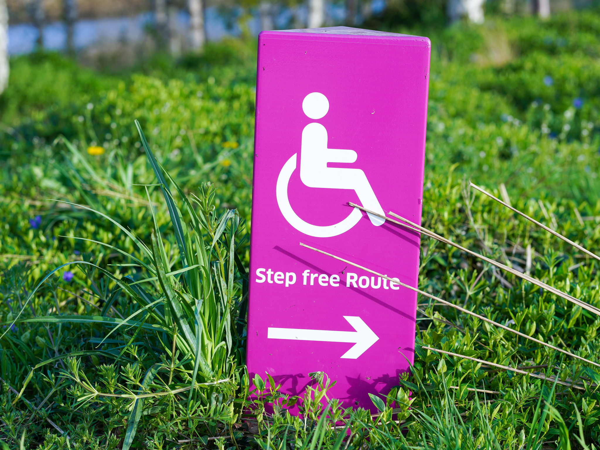 A handicapped accessible sign labeled step free route